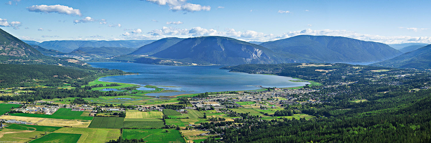 Salmon Arm Homes for Sale